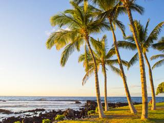 カイルア・コナ/ハワイ島(ハワイ州/米国)